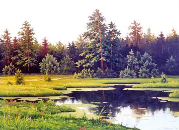 лес, озеро, пруд