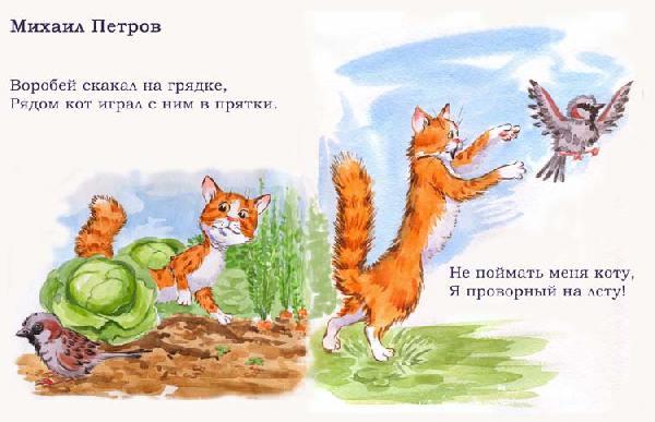 сочинение про кота и воробья