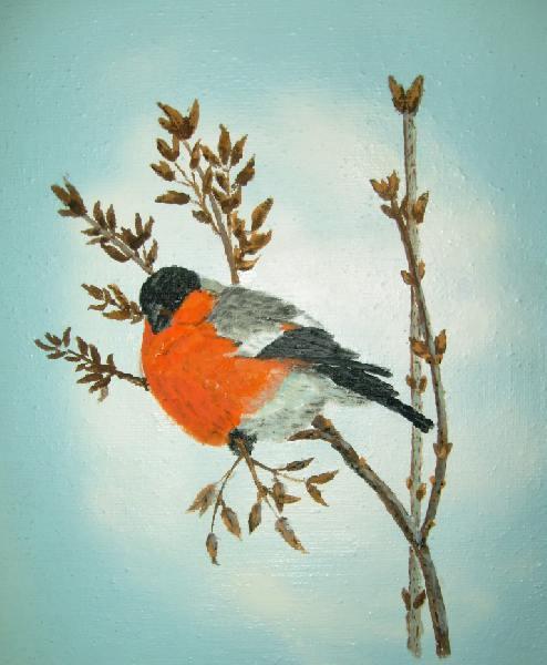 Как нарисовать птицу снегирь