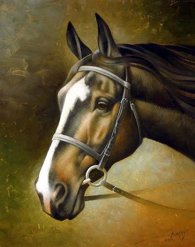 """Буклет для вышивки крестом картины  """"Голова лошади """", для опытных рукодельниц.В файле - схемы ч/б и цвет, карта ниток..."""
